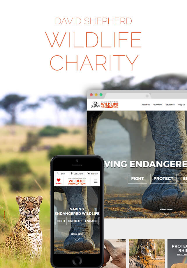 David Shepherd Wildlife Foundation PHA Creative