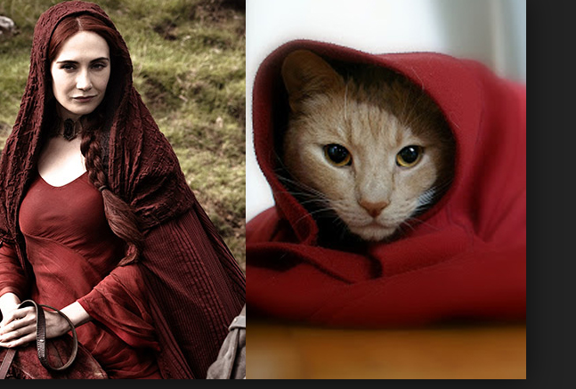 Animals that look like Game of Thrones characters