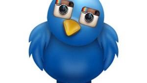 Insta v Twitter