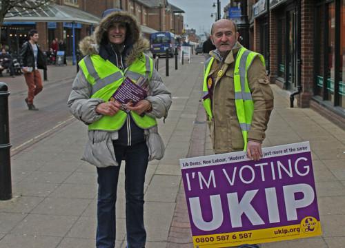 UKIP voters election