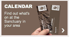 The Donkey Santuary event calendar with a grey background with a tickets graphic on the front
