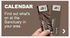 The Donkey Santuary event calendar