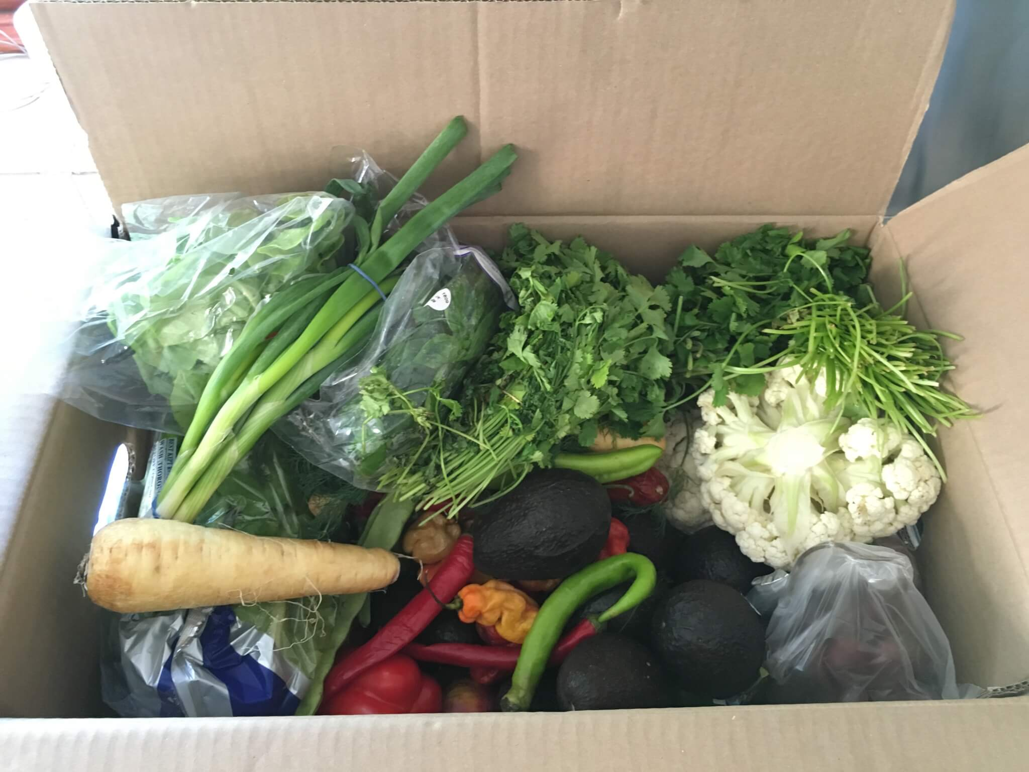 Vegetables and herbs like as spring onions, coriander, peppers in a cardboard box
