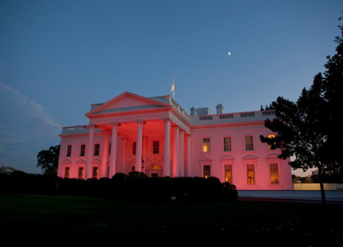 Breast Cancer Awareness White House Pinkification Charity Commercialisation Commodification