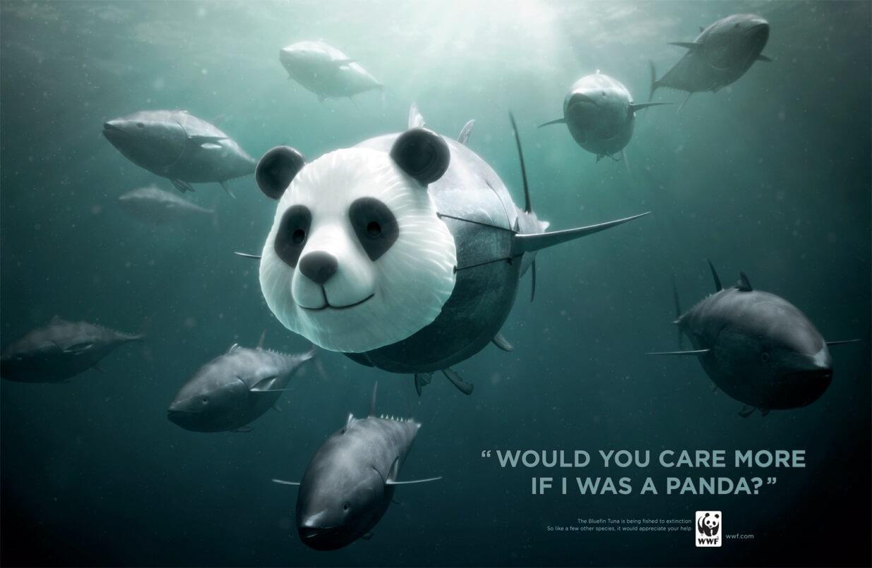 WWF Panda Tuna Campaign