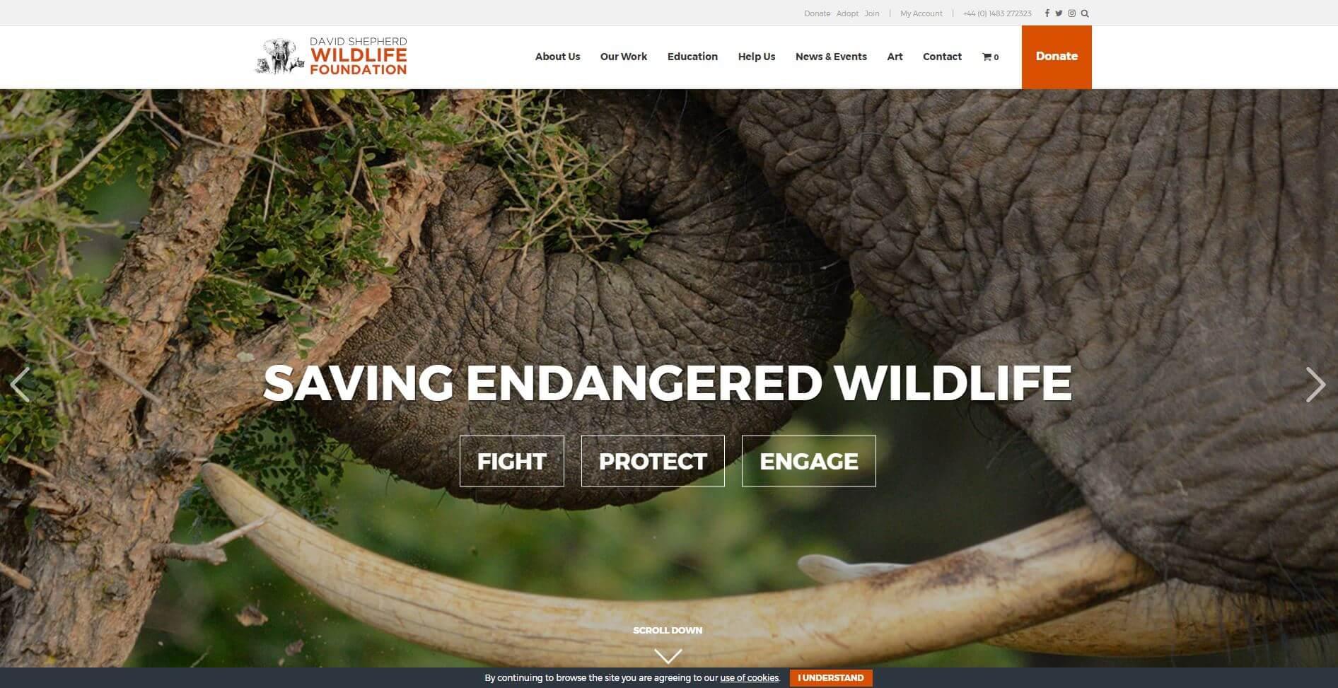 David Shepherd Wildlife Foundation PHA Media Charity Website