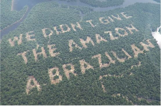 We didn't give the amazon a Brazilian tweet from Paddy Power