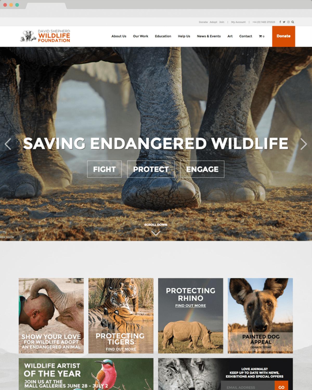 David Shepherd website