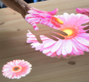 Pink flower on the table with Tovertafel technology
