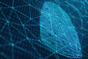 Fingerprint digital security