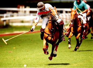 A man riding a horse playing polo