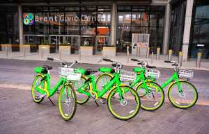 Lime bikes on the road
